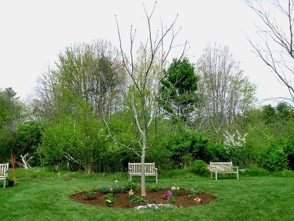 RiverWoods Arboretum, RiverWoods Retirement Community, Exeter NH