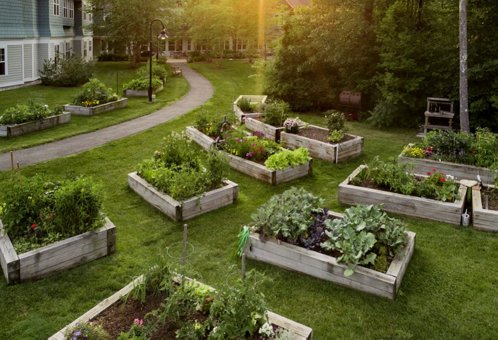 Beautiful homes overlooking accessible raised bed gardens at RiverWoods Exeter in Exeter, New Hampshire.