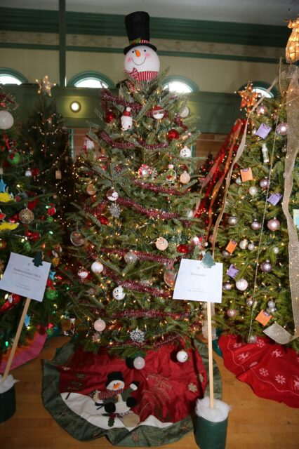 Tree donated by RiverWoods in 2019